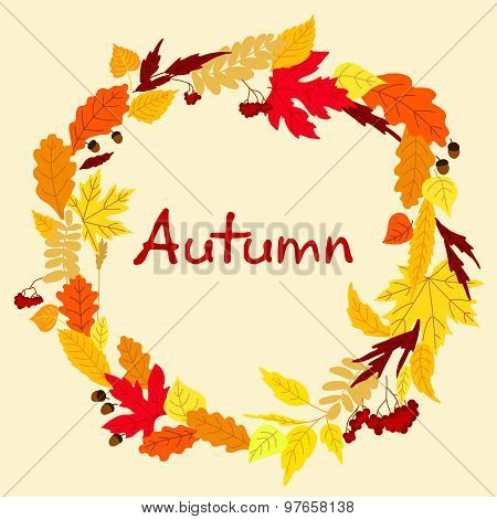 Decorative colorful autumn leaves frame