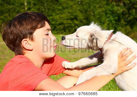 boy play with white puppy on the summer country background