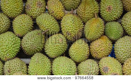 Durian Fruits For Sale At The Market In Mekong Delta