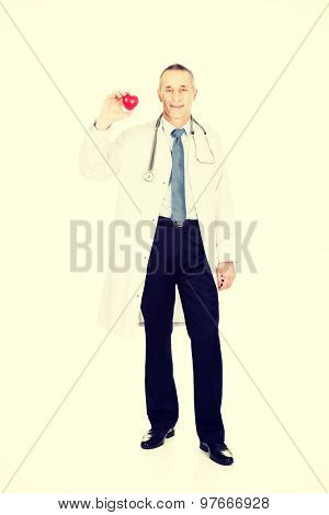Experienced mature male doctor holding heart model.