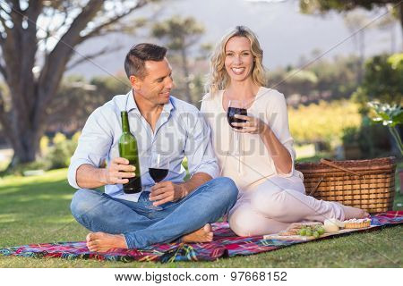 Portrait of smiling couple sitting on picnic blanket and drinking wine in parkland