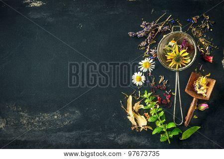 Wildflowers and various herbs for herbal tea