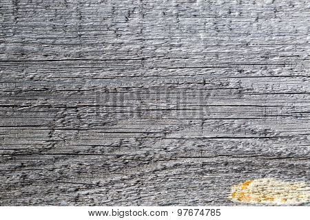 Old pine planks macro texture