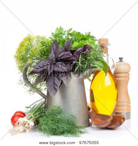 Fresh garden herbs in watering can. Isolated on white background