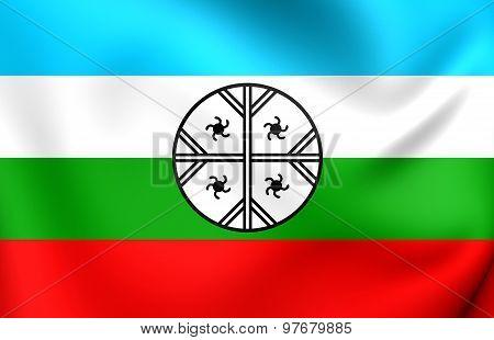 Mapuche Flag Of Huenteche Territory