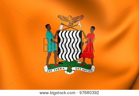 President Of Zambia Standard