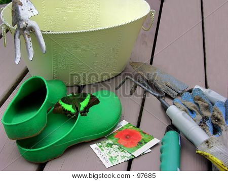 Garden Tools And Green Butterfly