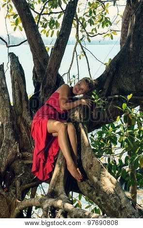 Young Woman Climbing Big Exotic Tree