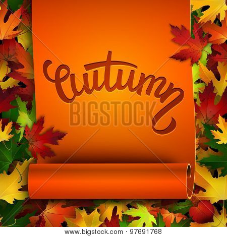 Autumn Vector Card, Hand Written Text On Realistic Ribbon, Colorful Autumn Leaves Background