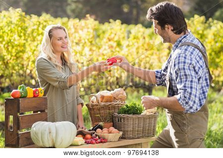 Smiling blonde customer discussing with the farmer