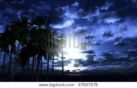 3D render of a palm trees landscape against a moonlit sky