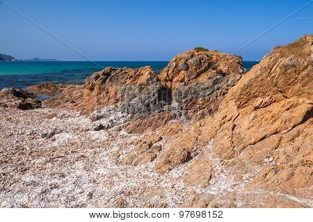 Dry Algae On Rocky Mediterranean Coast