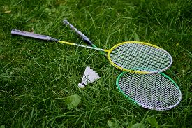 picture of shuttlecock  - Rackets and shuttlecocks for badminton on the grass - JPG