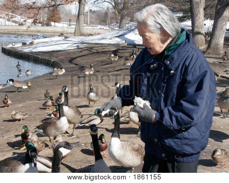 Idoso, conversando com os animais do Parque