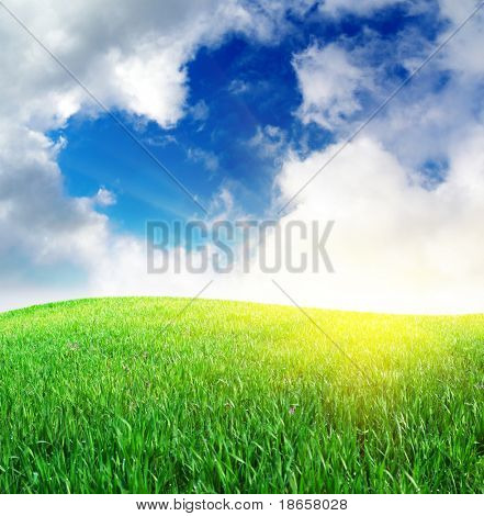Grass and deep blue sky. Nature composition.