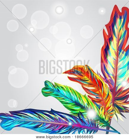 Bright Feathers