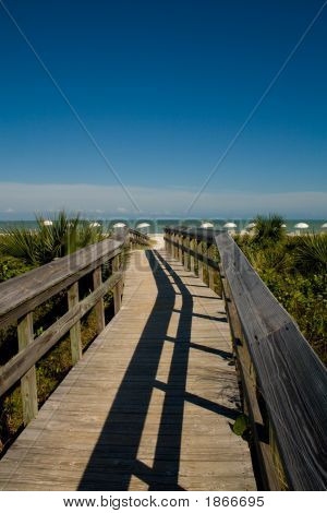 Long View Of Bridge And Beach