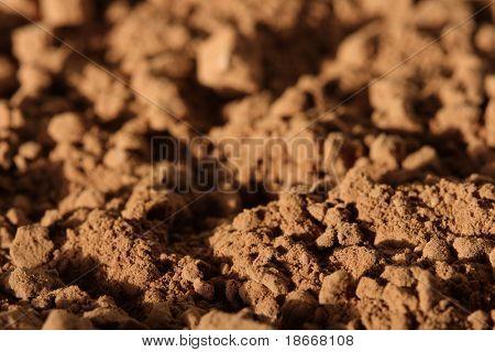 cocoa powder background. shallow DOF