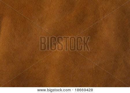 Rawhide Buffalo Leather, XXL size background