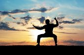 pic of tai-chi  - Silhouette warrior motorcycle - JPG