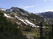 stock photo of snowbird  - Mount Baldy seen from Snowbird resort Alta Utah - JPG