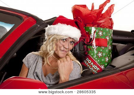 Woman Santa Hat Car Gift Look