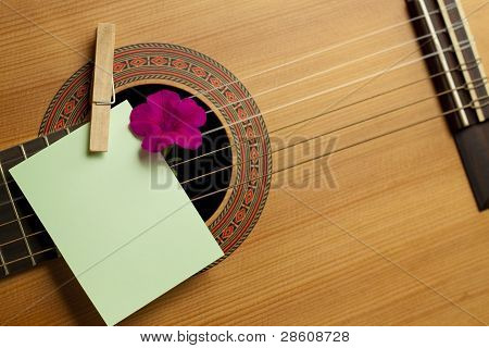 Acoustic guitar and flower