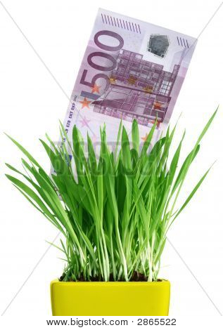 Money Growing Out Of Grass Pot
