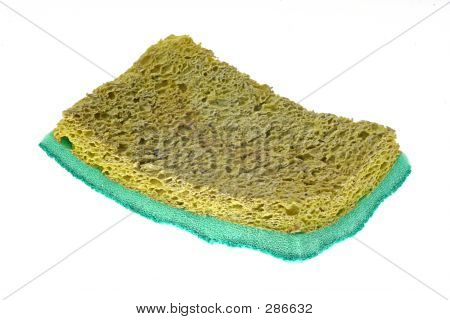 Old Dry Spong