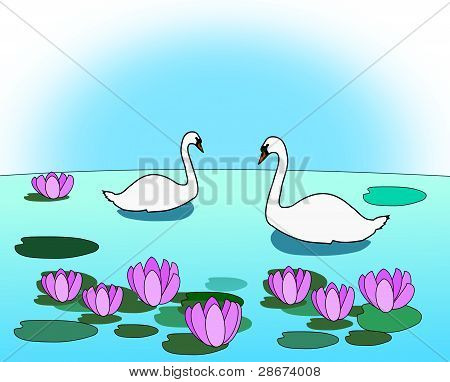 Swans in the Lily Pond