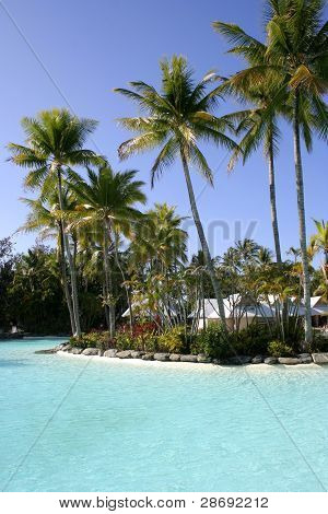 Tropical Resort Pool, Port Douglas, Queensland