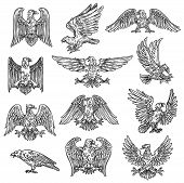 Eeagles Herladic Sketch Icons. Vector Gothic Heraldry Bird Design, Coat Of Arms And Royal Shield Sym poster