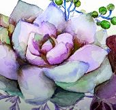 Texture Watercolor Painting Succulent Flowers, Painting Bright Flowers, Flower Still Life. Illustrat poster