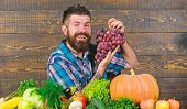 Farmer Proud Of Harvest Vegetables And Grapes. Farming And Harvesting Concept. Man Bearded Holds Gra poster
