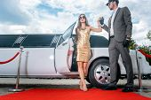 Driver helping VIP woman or star out of limo on red carpet to a reception  poster