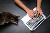 Man Working In Pet Friendly Office With Cat By Using A Laptop Computer On Vintage Wooden Table. Hand poster
