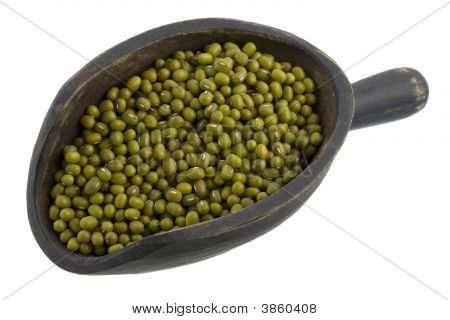Scoop Of Mung Beans