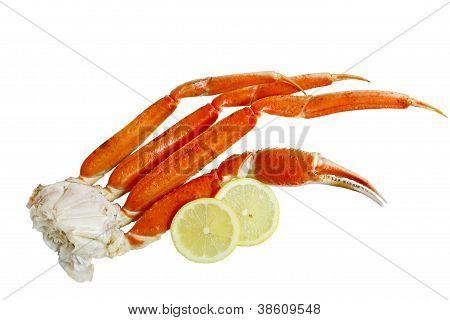 Crab Cluster