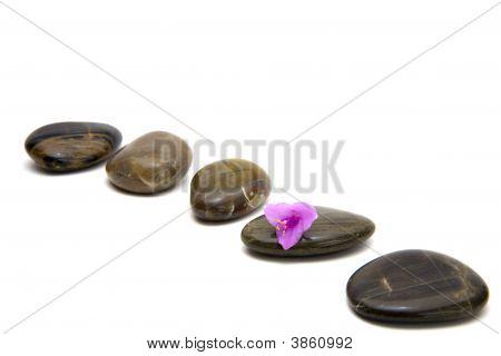 Zen Stones With Flower Isolated.