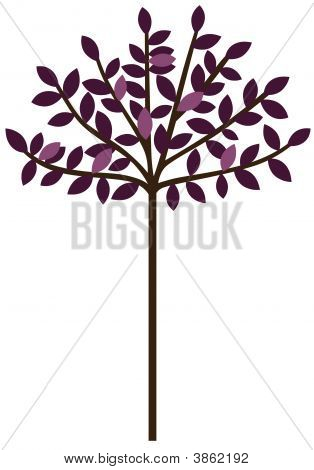 Baby Purple Tree