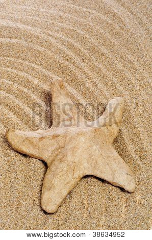 a paper-mache seastar on the sand of a beach