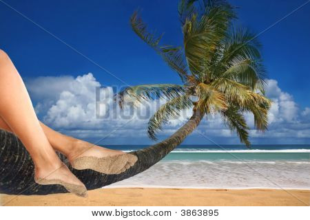 Total Relaxation At The Beach