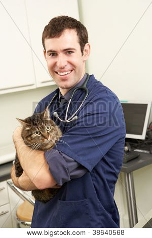 Male Veterinary Surgeon Holding Cat In Surgery