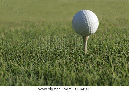 Te de la bola de golf