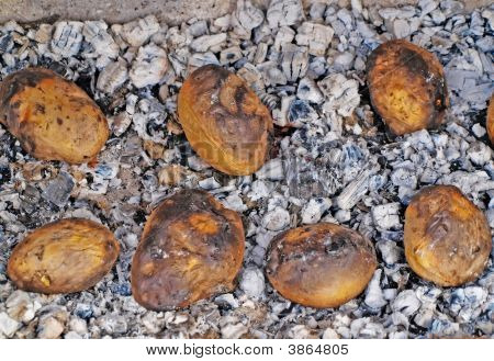 Potato On Coals