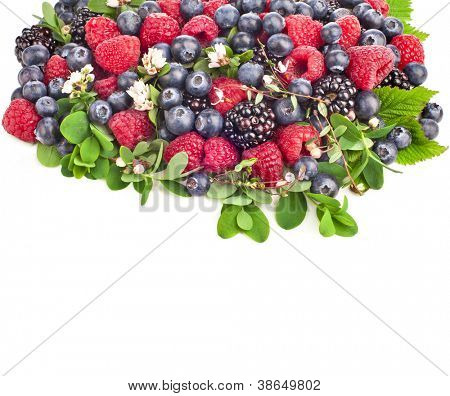 fresh berries bloom ,  border , isolated on a white background