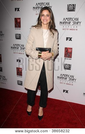LOS ANGELES - OCT 13:  Amanda Peet arrives at the
