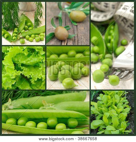 frisches grünes Gemüse-collage