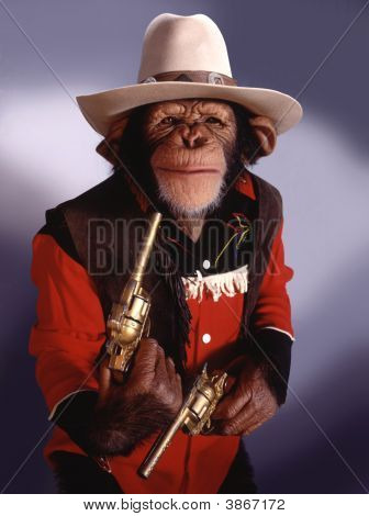 Chimpanzé de vaqueiro