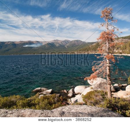 Fall View Of Lake Coast